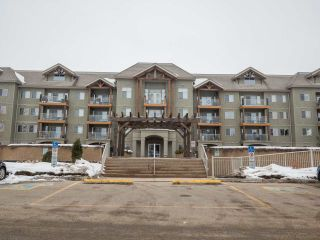 Main Photo: 133 278 SUDER GREENS Drive NW in Edmonton: Zone 58 Condo for sale : MLS®# E4101357