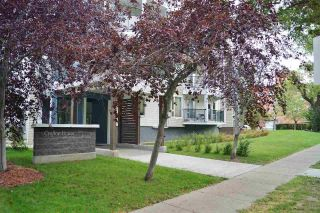 Main Photo: 301 9905 112 Street in Edmonton: Zone 12 Condo for sale : MLS®# E4127461