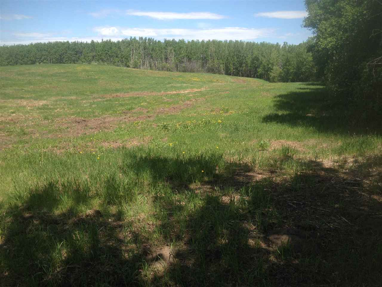 Photo 4: 52502 Range Road 22A: Rural Parkland County Rural Land/Vacant Lot for sale : MLS(r) # E4069524