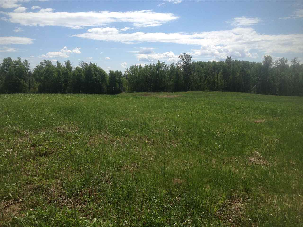 Photo 11: 52502 Range Road 22A: Rural Parkland County Rural Land/Vacant Lot for sale : MLS® # E4069524