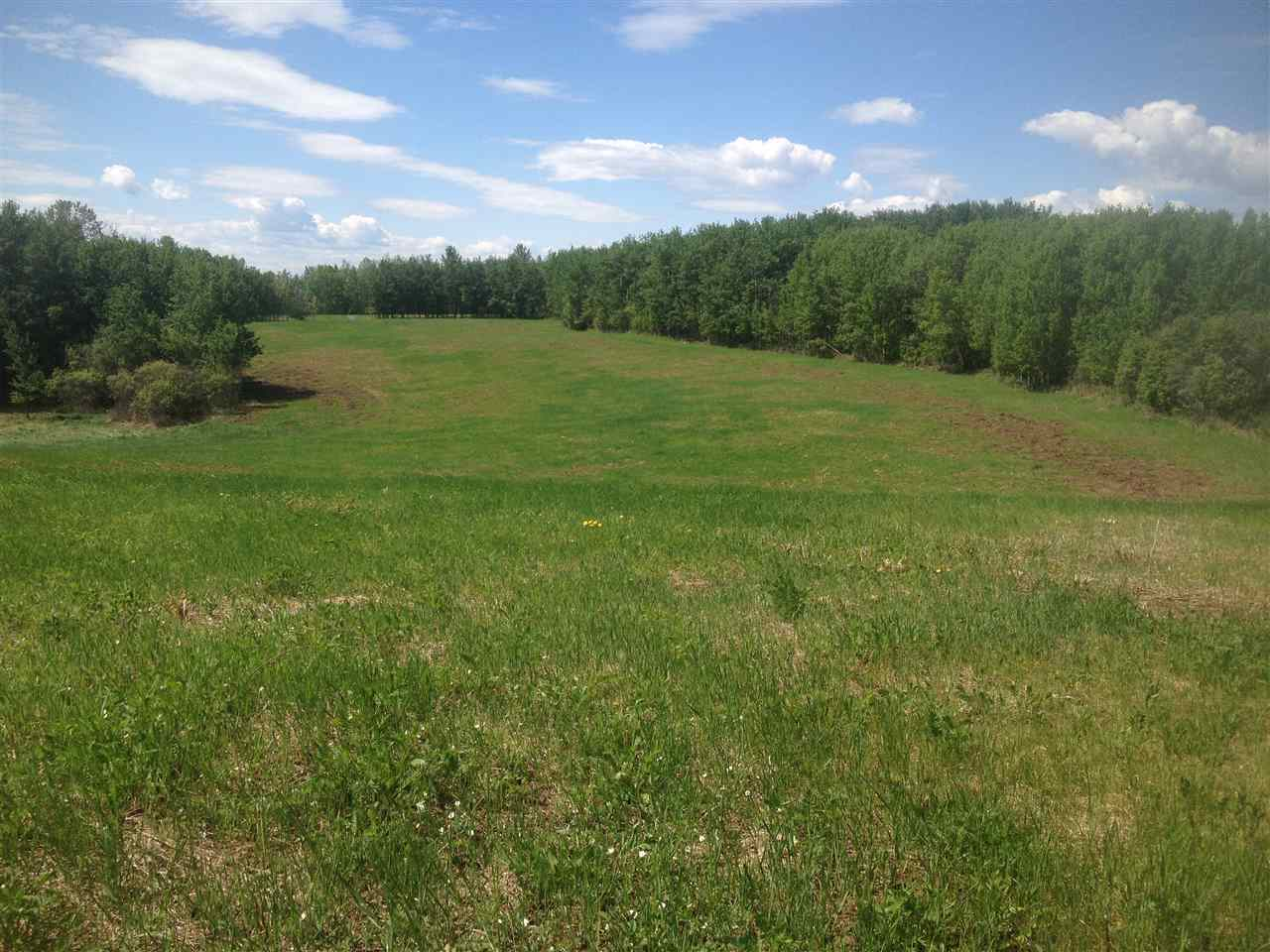 Main Photo: 52502 Range Road 22A: Rural Parkland County Rural Land/Vacant Lot for sale : MLS(r) # E4069524