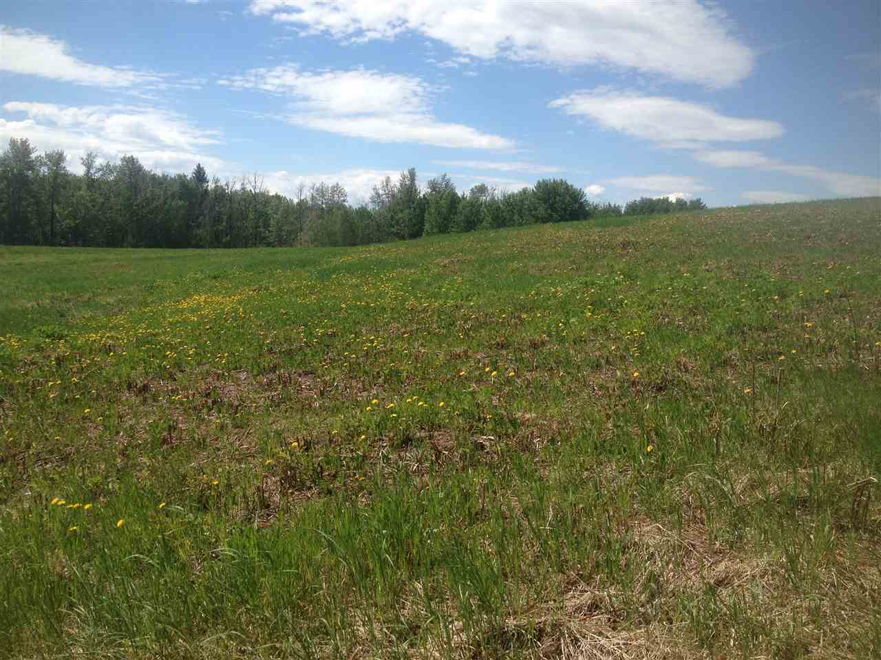 Photo 6: 52502 Range Road 22A: Rural Parkland County Rural Land/Vacant Lot for sale : MLS(r) # E4069524