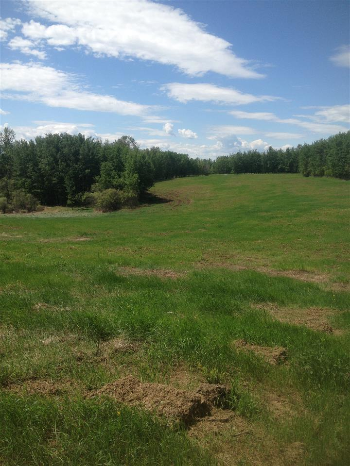 Photo 2: 52502 Range Road 22A: Rural Parkland County Rural Land/Vacant Lot for sale : MLS® # E4069524