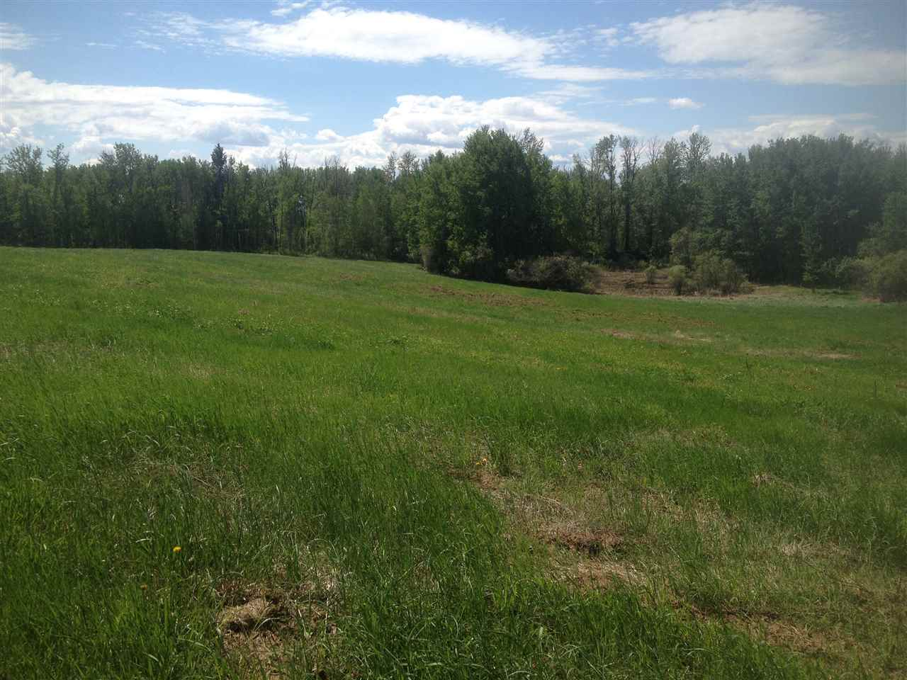 Photo 10: 52502 Range Road 22A: Rural Parkland County Rural Land/Vacant Lot for sale : MLS(r) # E4069524