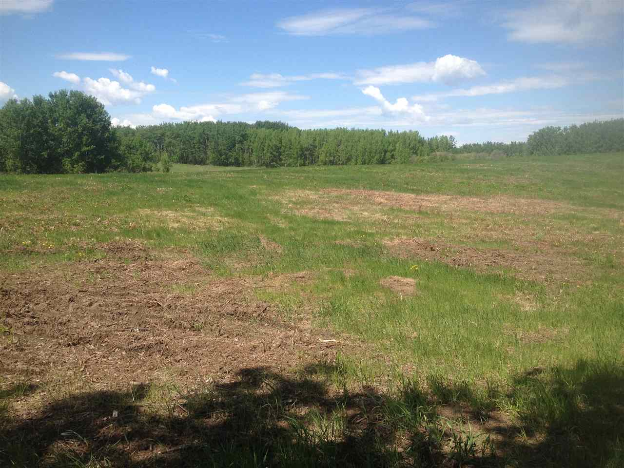 Photo 5: 52502 Range Road 22A: Rural Parkland County Rural Land/Vacant Lot for sale : MLS(r) # E4069524