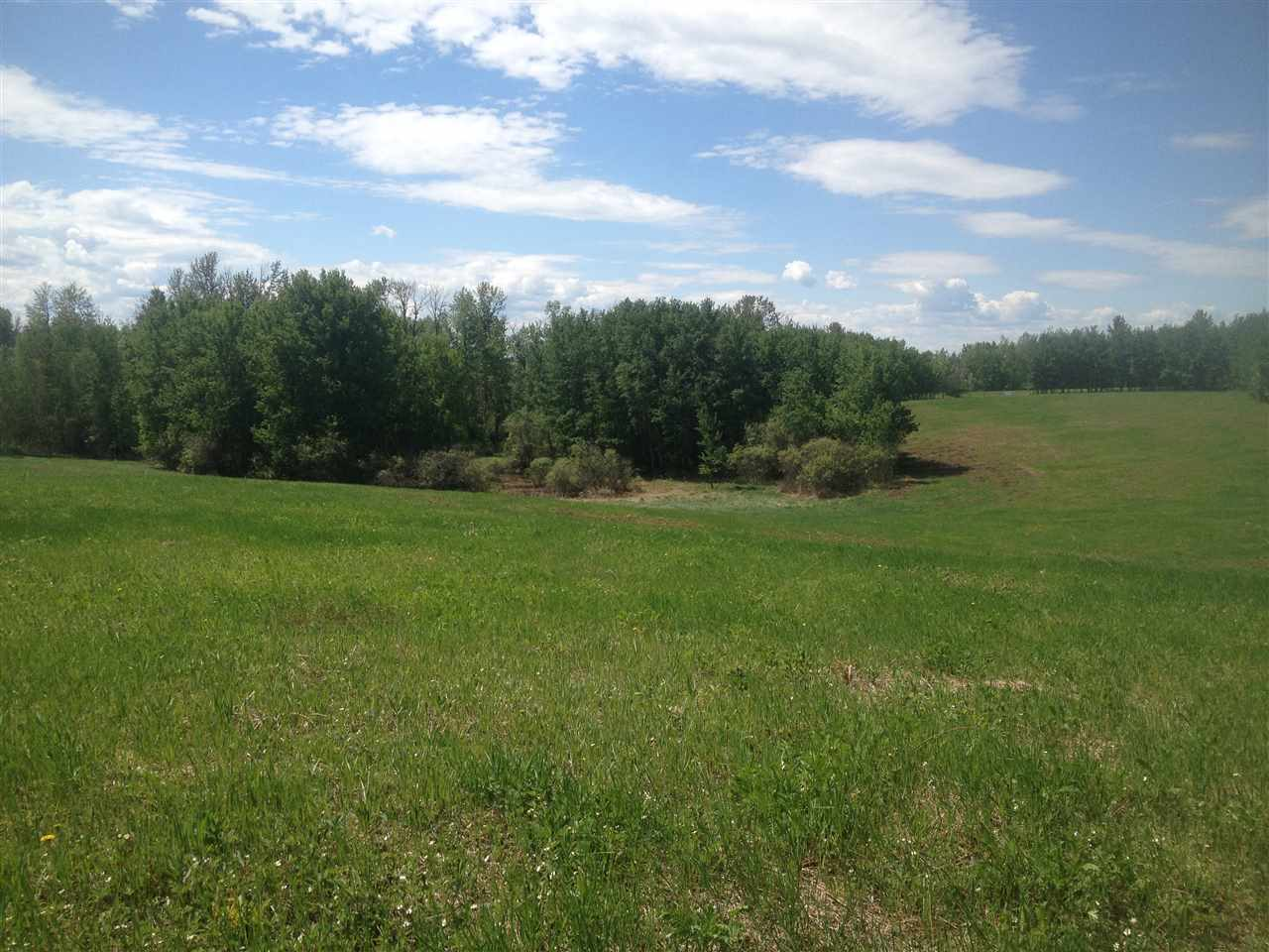 Photo 9: 52502 Range Road 22A: Rural Parkland County Rural Land/Vacant Lot for sale : MLS® # E4069524