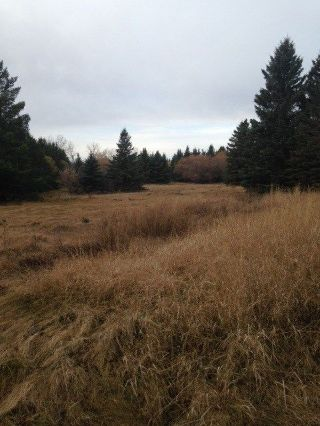 Main Photo: 27 52125 Rge Rd 275: Rural Parkland County Rural Land/Vacant Lot for sale : MLS® # E4097156