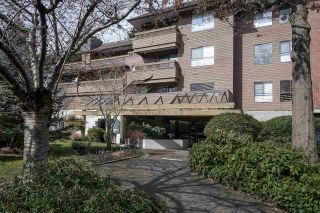 Main Photo: 216 7431 MINORU Boulevard in Richmond: Brighouse South Condo for sale : MLS®# R2248593