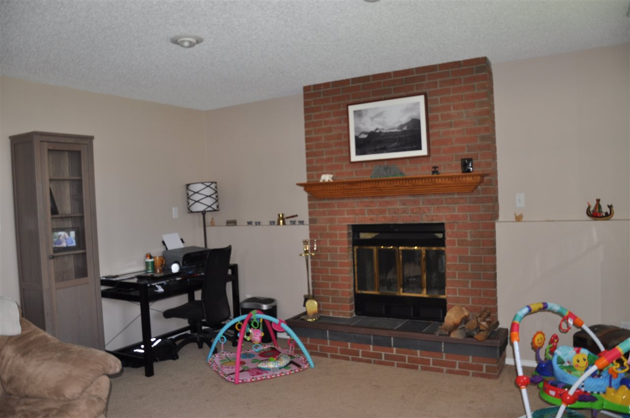 other side f the lower level family room - wood burning fireplace