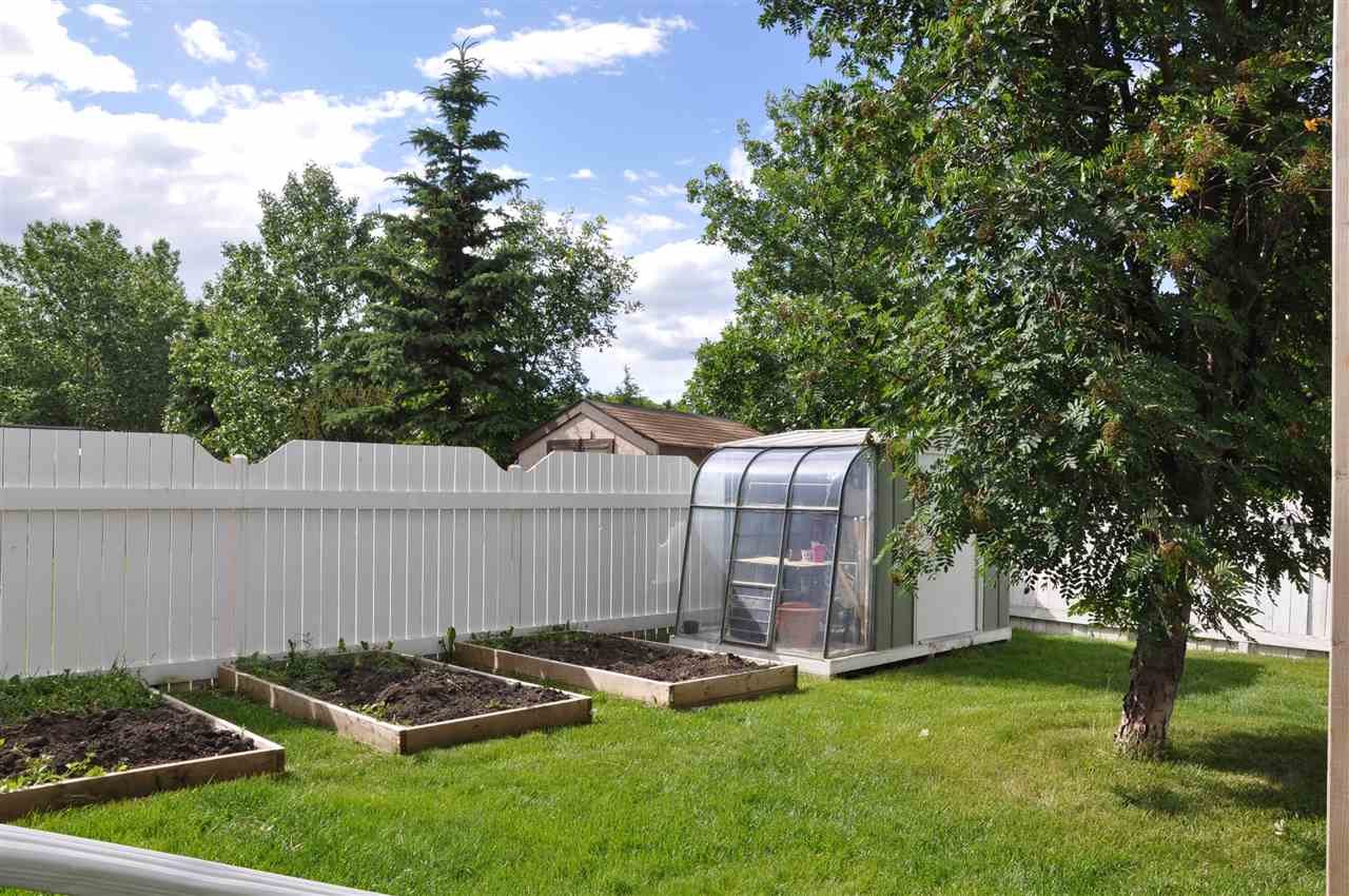 3 raised garden beds and the shed/greenhouse are along the west side of the yard