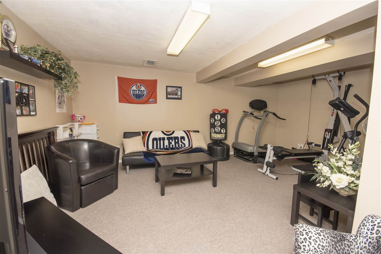 Man Cave.. Exercise Room..? Why not both?