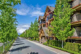 "Main Photo: 409 8328 207A Street in Langley: Willoughby Heights Condo for sale in ""Yorkson Creek"" : MLS®# R2267103"