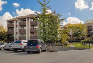 "Main Photo: 408 340 GINGER Drive in New Westminster: Fraserview NW Condo for sale in ""FRASER MEWS"" : MLS®# R2270133"