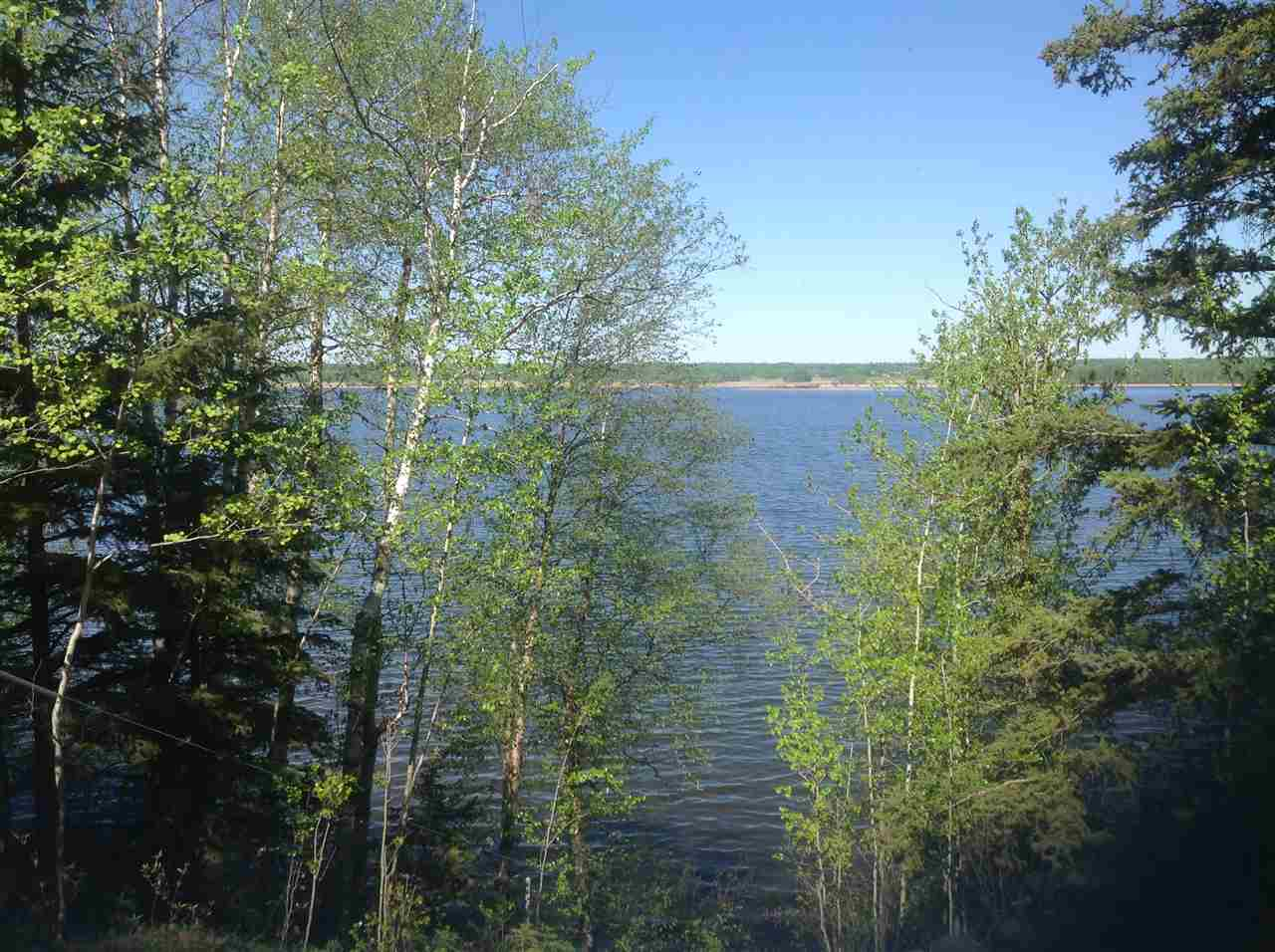 Photo 12: 18 53424 Rge Rd 60: Rural Parkland County Rural Land/Vacant Lot for sale : MLS® # E4019546