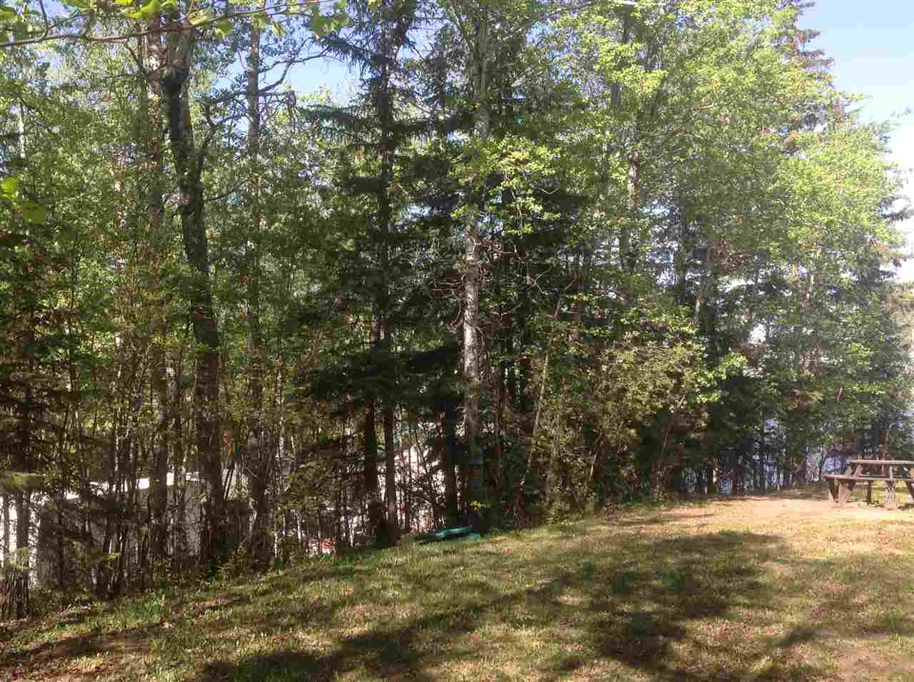 Photo 5: 18 53424 Rge Rd 60: Rural Parkland County Rural Land/Vacant Lot for sale : MLS® # E4019546