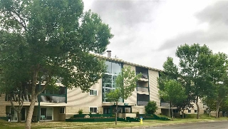Main Photo:  in Edmonton: Zone 29 Condo for sale : MLS(r) # E4074073