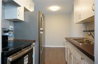 Main Photo: 302 9006 149 Street in Edmonton: Zone 22 Condo for sale : MLS® # E4079155