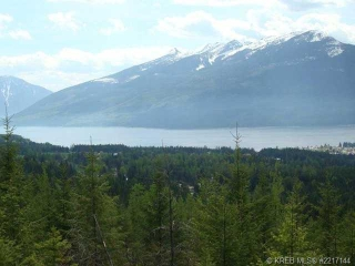 Main Photo: Lot 6 Alexander Road in Nakusp Rural: Home for sale : MLS(r) # 2217143