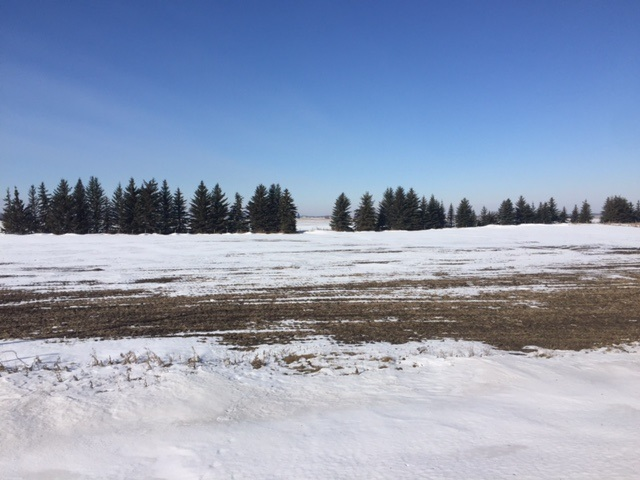 Main Photo: RR 164 TWP: Rural Lamont County Rural Land/Vacant Lot for sale : MLS® # E4053492