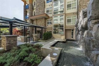 "Main Photo: 217 2495 WILSON Avenue in Port Coquitlam: Central Pt Coquitlam Condo for sale in ""ORCHID"" : MLS®# R2287984"