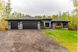 Main Photo: 11 54022 RGE RD 275: Rural Parkland County House for sale : MLS®# E4130357
