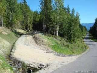 Main Photo: Lot 7 Alexander Road in Nakusp Rural: Home for sale : MLS® # 2217144