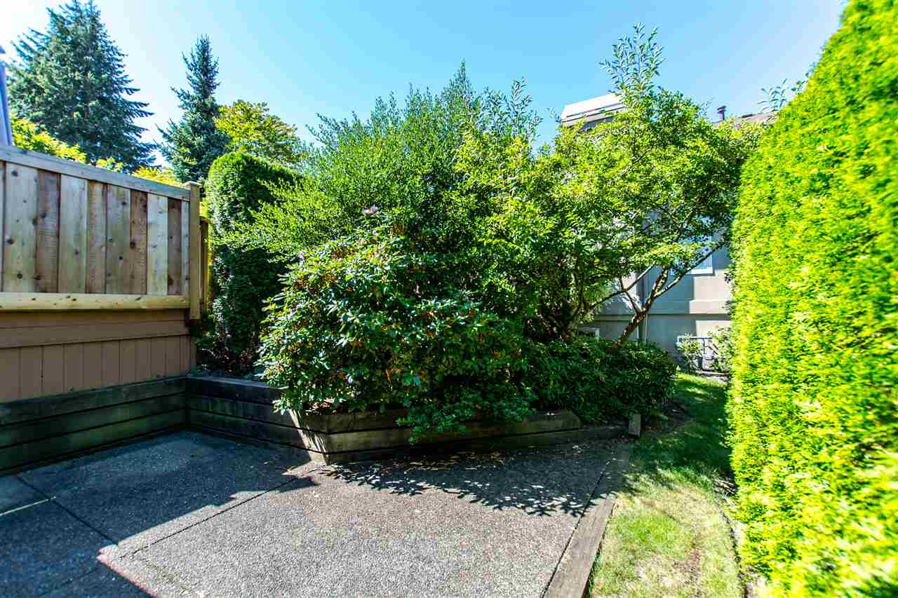 "Photo 15: 19 15151 26 Avenue in Surrey: Sunnyside Park Surrey Townhouse for sale in ""Westglen"" (South Surrey White Rock)  : MLS® # R2101497"