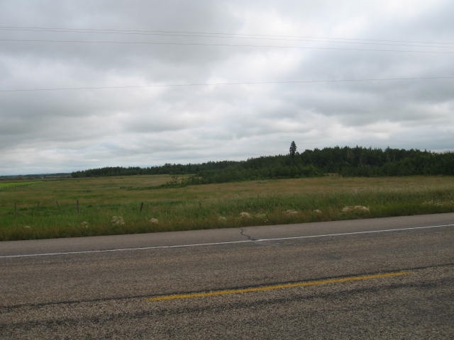Main Photo: WM4 RR20 TWP 55 SEC 25 Qtr SE: Rural Lamont County Land Commercial for sale : MLS® # E4083485