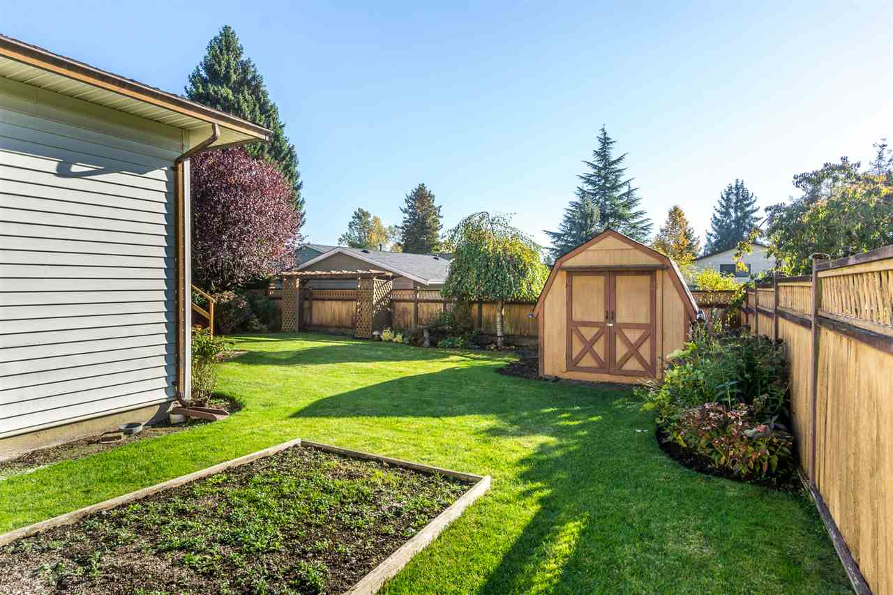 "Photo 19: Photos: 15304 85A Avenue in Surrey: Fleetwood Tynehead House for sale in ""Fleetwood"" : MLS® # R2217891"