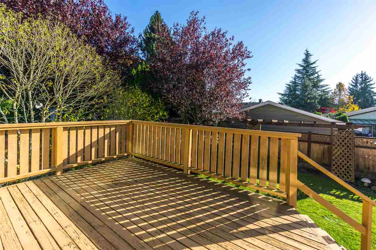 "Photo 16: Photos: 15304 85A Avenue in Surrey: Fleetwood Tynehead House for sale in ""Fleetwood"" : MLS® # R2217891"