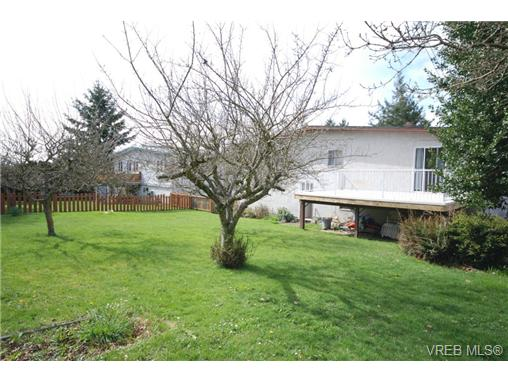 Photo 15: 4211 Panorama Drive in VICTORIA: SE High Quadra Single Family Detached for sale (Saanich East)  : MLS(r) # 335079