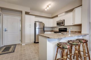 Main Photo:  in Edmonton: Zone 29 Condo for sale : MLS® # E4093287