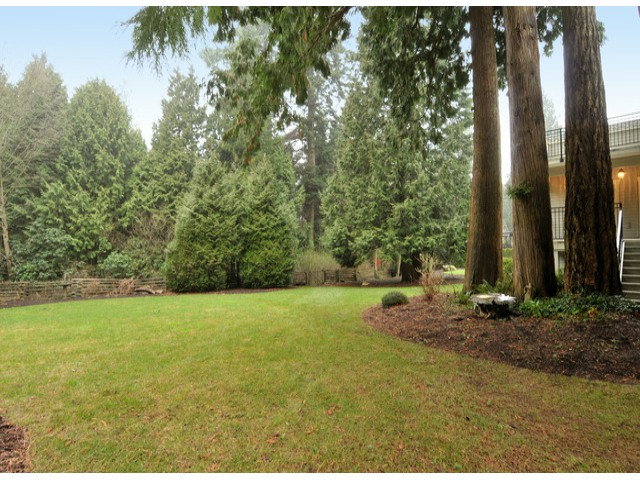 "Photo 3: 3169 136TH Street in Surrey: Elgin Chantrell House for sale in ""Bayview"" (South Surrey White Rock)  : MLS® # F1401327"