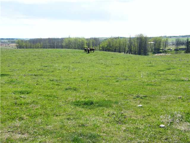Main Photo: : Rural Mountain View County Rural Land for sale : MLS® # C3653320
