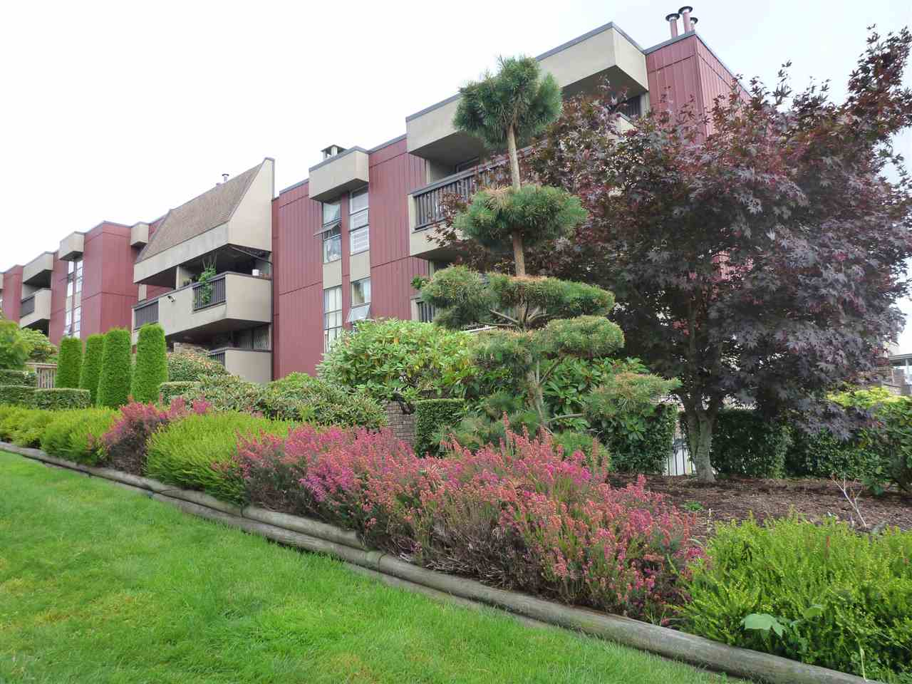 "Main Photo: 301 1040 FOURTH Avenue in New Westminster: Uptown NW Condo for sale in ""HILLSIDE TERRACE"" : MLS(r) # R2099693"