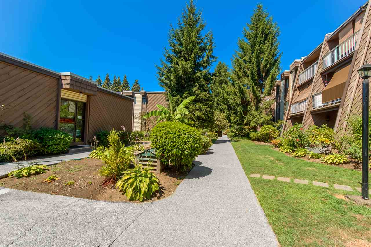 "Photo 19: 213 3921 CARRIGAN Court in Burnaby: Government Road Condo for sale in ""LOUGHEED ESTATES"" (Burnaby North)  : MLS(r) # R2182216"