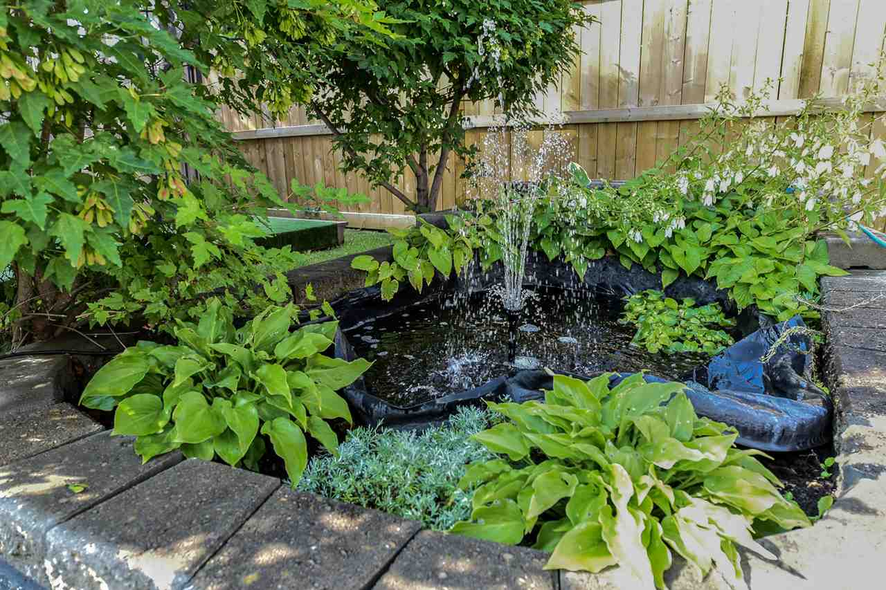 Your own fishpond with fountain!