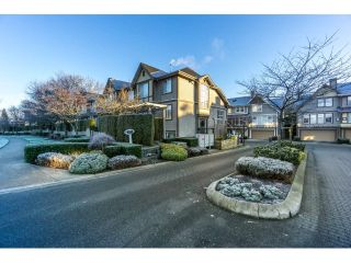 "Main Photo: 14 6588 188 Street in Surrey: Cloverdale BC Townhouse for sale in ""Hillcrest Place"" (Cloverdale)  : MLS® # R2227458"