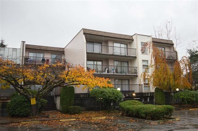 "Main Photo: 211 15238 100 Avenue in Surrey: Guildford Condo for sale in ""Cedar Grove"" (North Surrey)  : MLS® # R2239017"