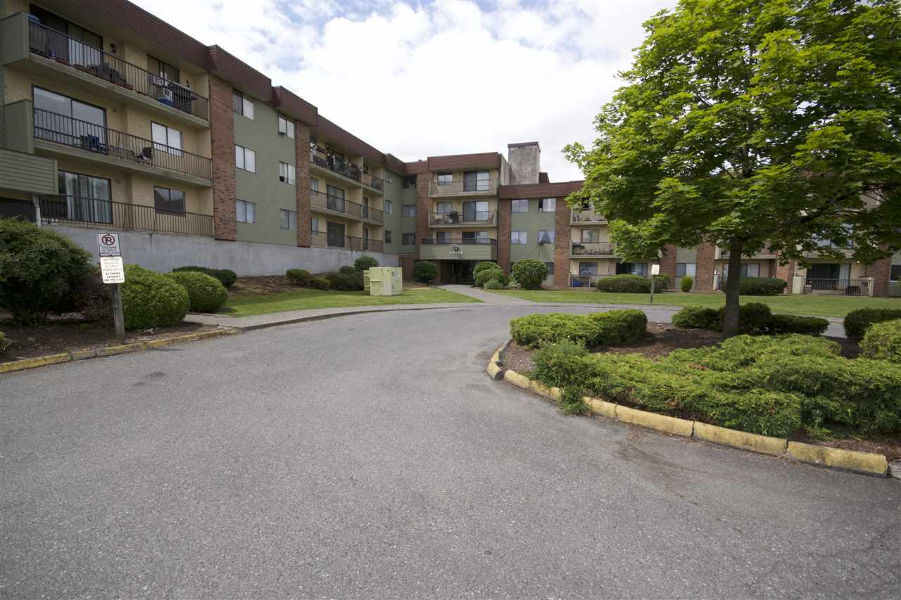 Main Photo: 123 45598 MCINTOSH Drive in Chilliwack: Chilliwack W Young-Well Condo for sale : MLS(r) # R2180494