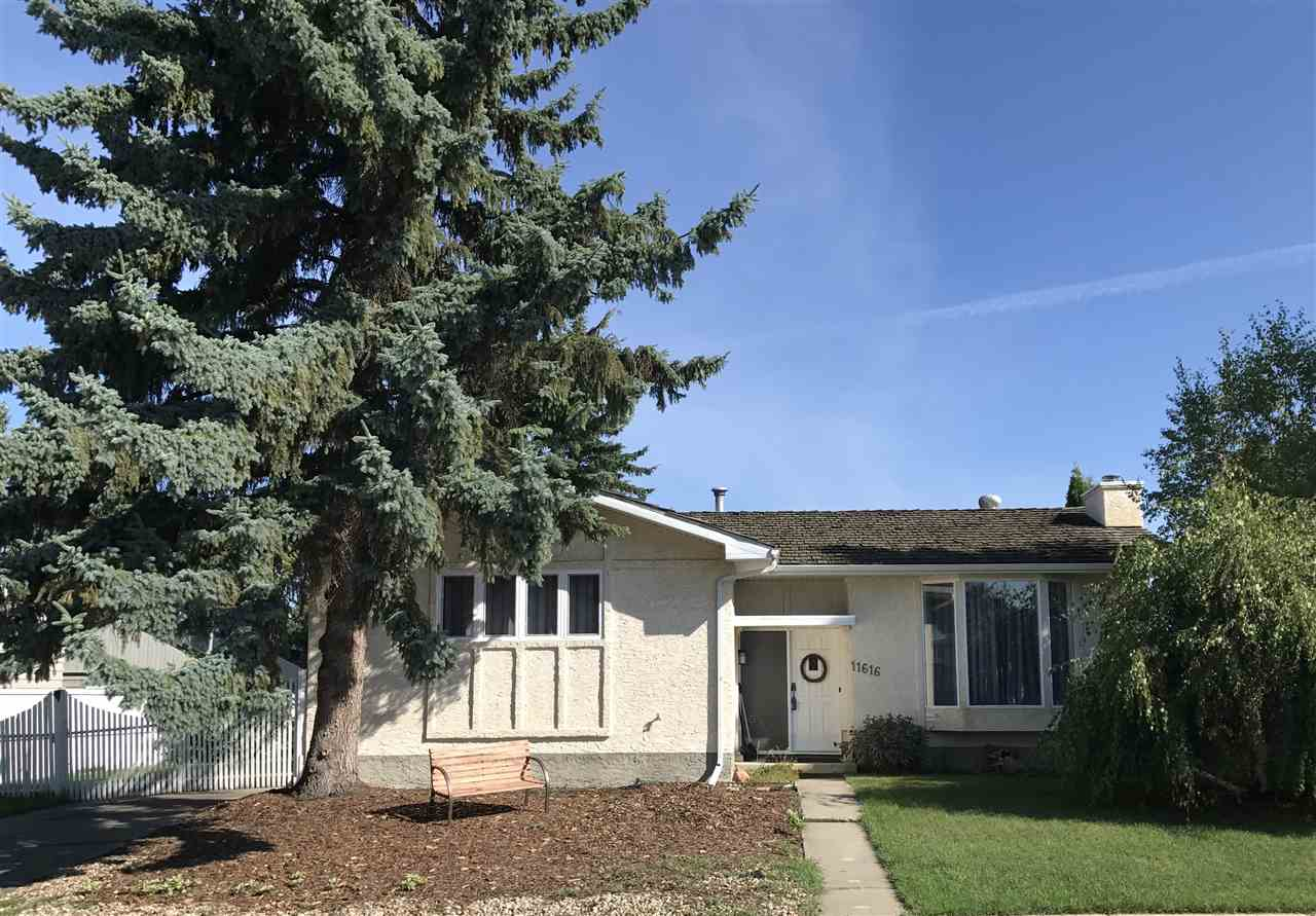 Main Photo: 11616 39A Avenue in Edmonton: Zone 16 House for sale : MLS® # E4076796