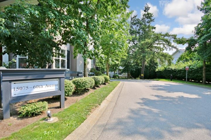 "Main Photo: 81 15075 60 Avenue in Surrey: Sullivan Station Townhouse for sale in ""NATURES WALK"" : MLS® # R2196871"