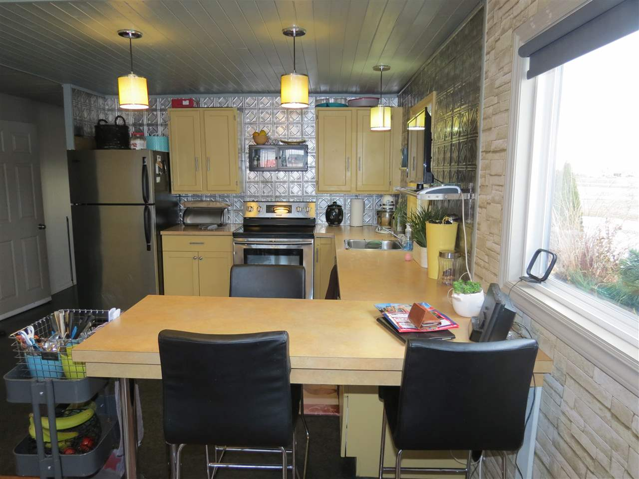 Photo 11: 55231 RR 261: Rural Sturgeon County Manufactured Home for sale : MLS® # E4051426