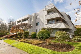 Main Photo: 304 1341 GEORGE Street: White Rock Condo for sale (South Surrey White Rock)  : MLS®# R2224136