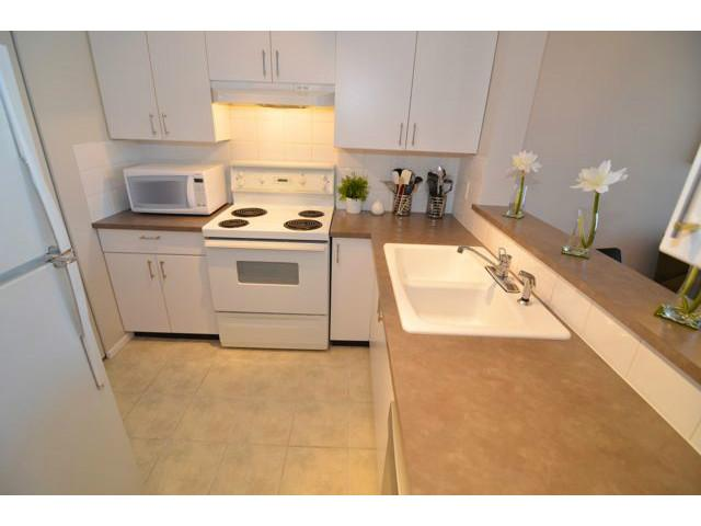 Main Photo: # 207 288 E 8TH AV in Vancouver: Mount Pleasant VE Condo for sale (Vancouver East)  : MLS® # V1030054