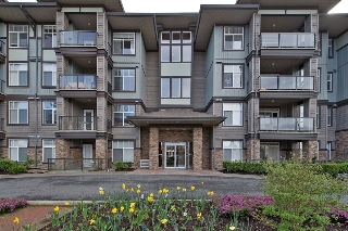 "Main Photo: 404 33338 MAYFAIR Avenue in Abbotsford: Central Abbotsford Condo for sale in ""THE STERLING"" : MLS®# F1436413"