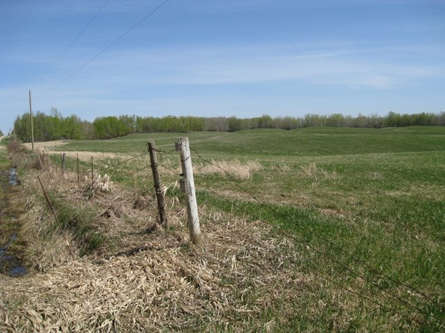 Main Photo: RGE RD 55 & 1/4 mile N of Sec 633: Rural Lac Ste. Anne County Rural Land/Vacant Lot for sale : MLS® # E3408769
