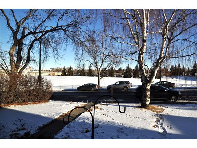 Photo 26: 3031 25 Street SW in Calgary: Richmond House for sale : MLS® # C4092785
