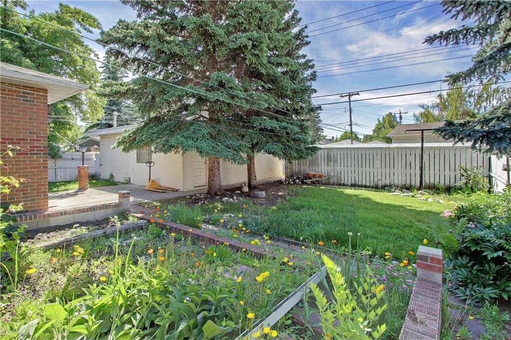 VEGATABLE GARDEN/BACKYARD