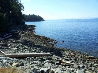 Main Photo: 12177 SUNSHINE COAST Highway in Pender Harbour: Pender Harbour Egmont House for sale (Sunshine Coast)  : MLS® # V1117958